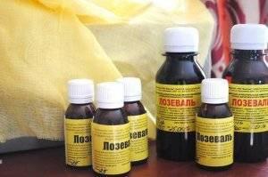 Аскосфероз у пчел: лечение и профилактика
