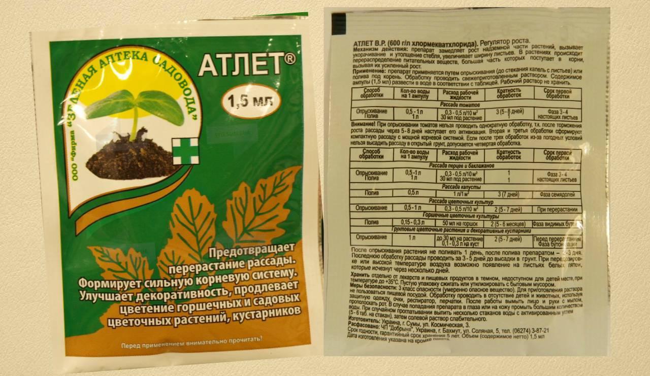 Применение препарата атлет для томатов
