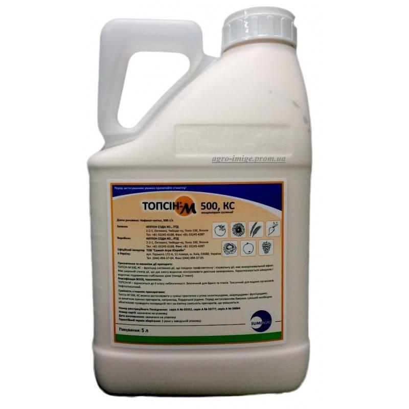 Фунгицид «топсин-м» — инструкция по применению против болезней полевых, плодовых культур, овощей и винограда