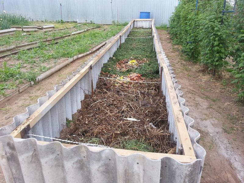 Особенности ландшафтного дизайна дачного участка с огородом