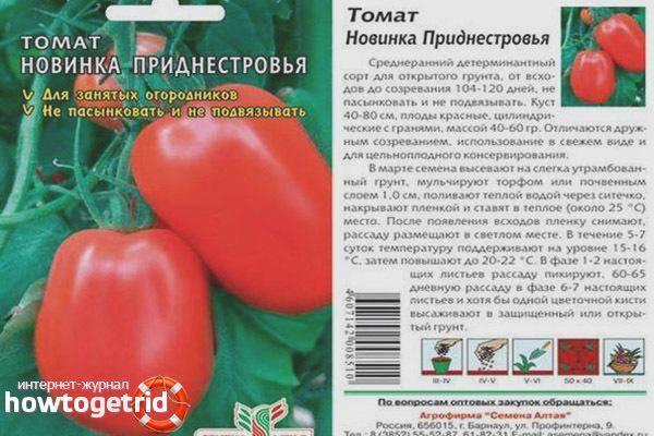 Характеристика и описание томата «новинка приднестровья»