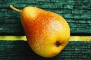 Чем полезна китайская груша, калорийность нэши и сорта. китайская груша: описание, полезные свойства и противопоказания