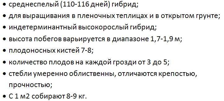 Томат русский размер: отзывы, фото, урожайность