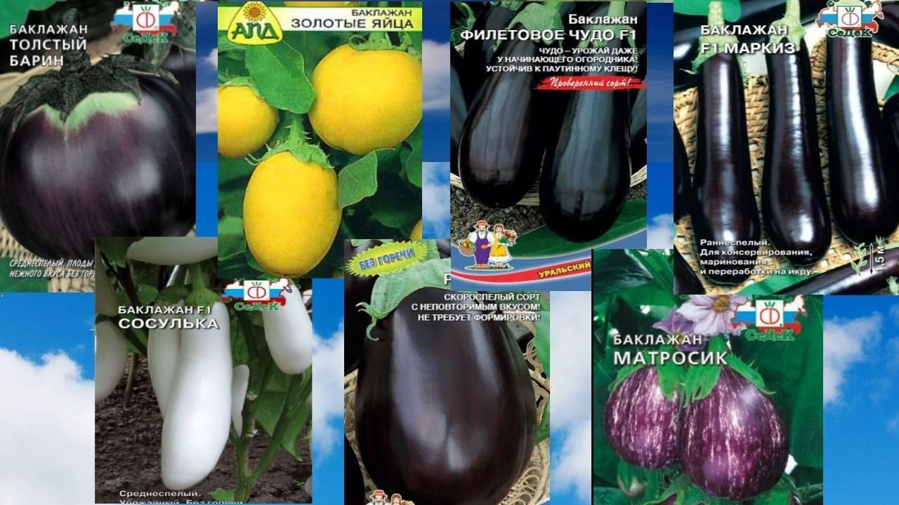 Томат полосатый рейс: отзывы, фото, урожайность, выращивание