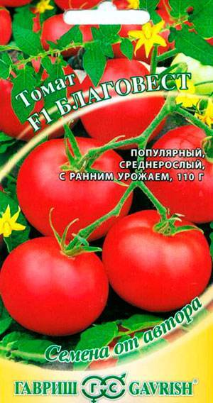 Сорт томата благовест