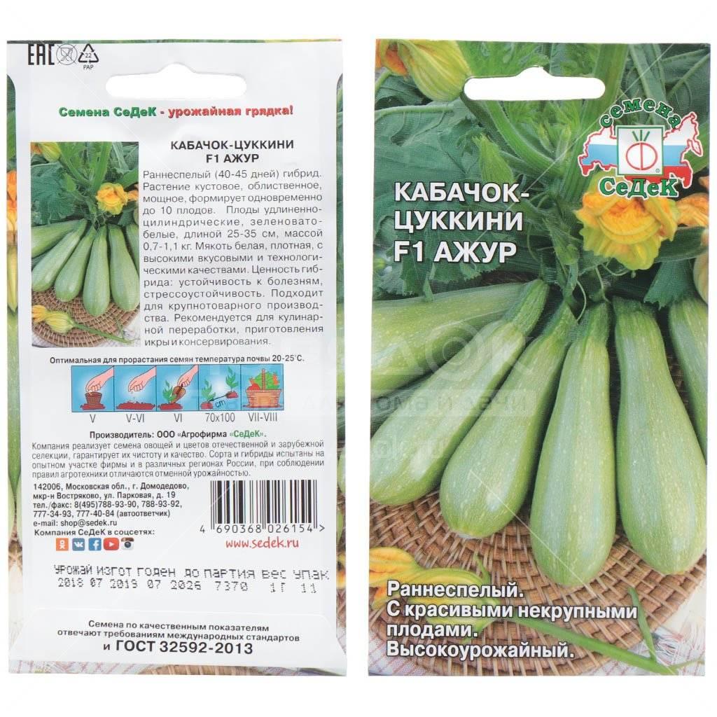 Лучшие сорта кабачков, или как добиться идеального урожая
