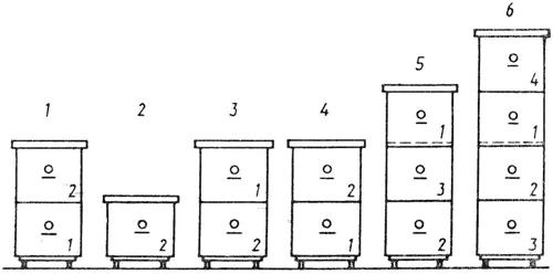 Улей дадан: подробное описание с размерами и чертежами