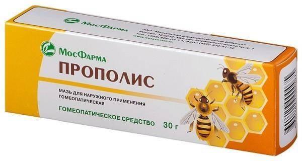 Лечение гайморита, ринита и насморка прополисом