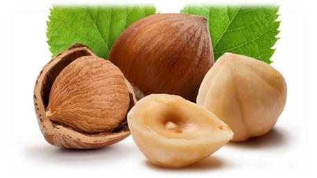 Орех фундук — польза и вред, секреты применения