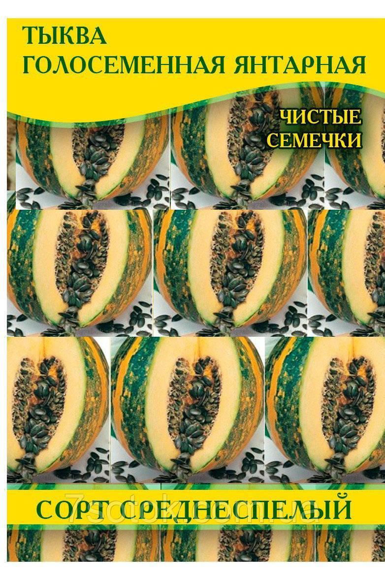 Характеристики и описание сортов голосемянной тыквы, выращивание