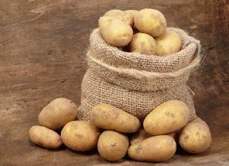Сорт картофеля «адретта» от немецких селекционеров