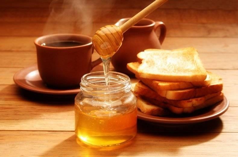 Мед подсолнечника: полезные свойства и противопоказания