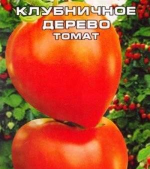Характеристика и описание сорта томата агрофирмы «сибирский сад» клубничное дерево
