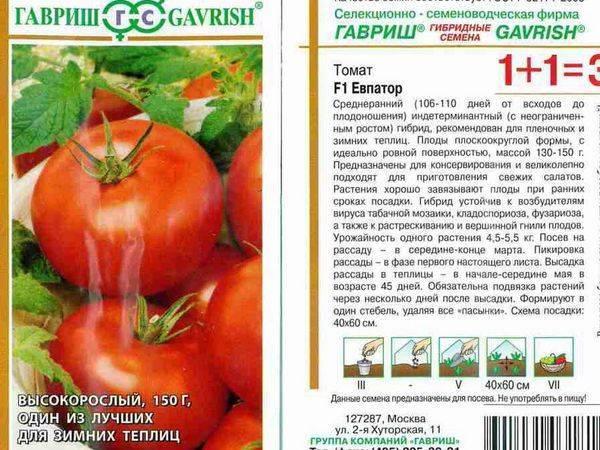 Подробное описание и характеристики томата киржач