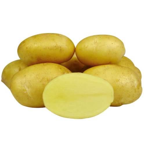 Картофель королева анна — описание сорта, фото, отзывы, посадка и уход