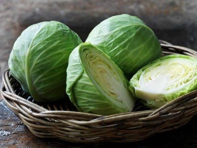 Белокочанная капуста — польза и вред | польза и вред
