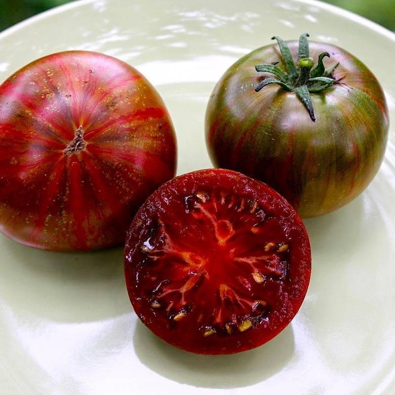 Томат лирика f1 — описание сорта, урожайность, фото и отзывы садоводов