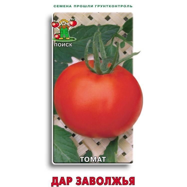 «дар заволжья»: описание и характеристика сорта томата, рекомендации по выращиванию помидоров