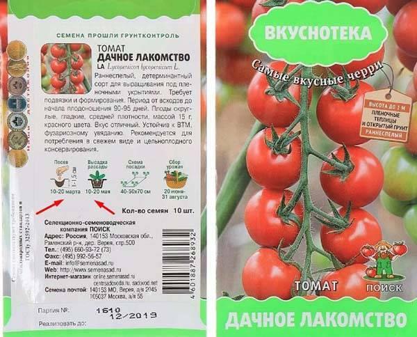 Температура грунта для помидор: оптимальные показатели и соблюдение режима