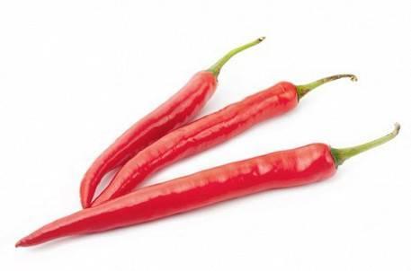 Отличный способ удивить соседей по даче и гостей — перец красный галстук: отзывы и описание сорта
