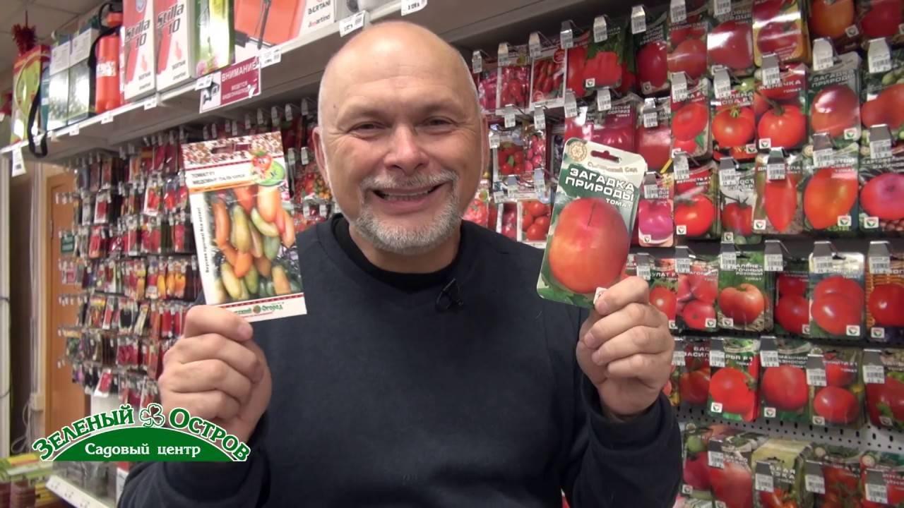Томат оранжевый медовые пальчики f1: описание, нюансы агротехники, отзывы