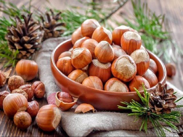 Лесной орех и фундук: в чем разница, фото, польза, вред