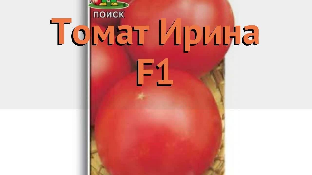 Томат ирина f1: отзывы, фото, урожайность