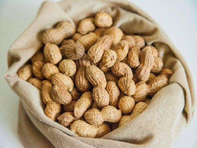 Арахис: польза и вред для организма, химический состав, калорийность, норма употребления