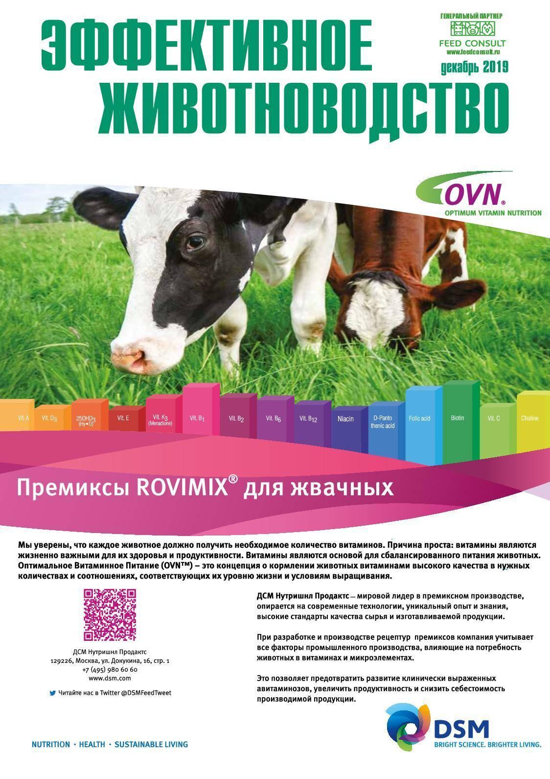 Способ повышения колострального иммунитета у новорожденных телят с пониженной жизнеспособностью российский патент 2010 года по мпк a01k67/02a61k39/108a61k31/00