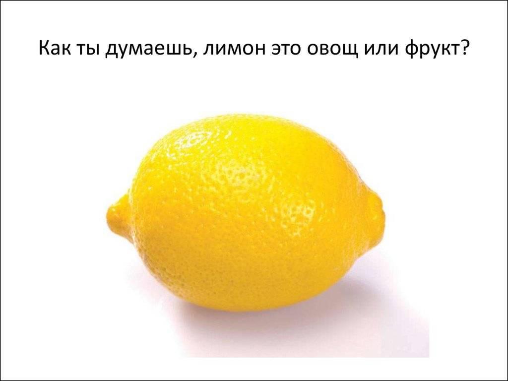 Лимон это фрукт или овощ — ягоды грибы