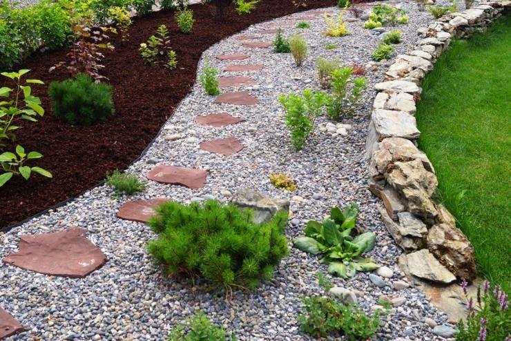 Подбор растений для создания миксбордеров своими руками: фото, готовые схемы, советы, видео