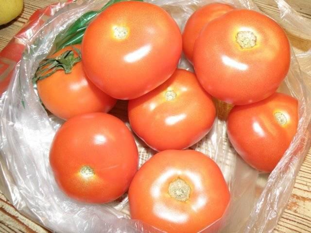 Сорт томата «любовь f1»: описание, характеристика, посев на рассаду, подкормка, урожайность, фото, видео и самые распространенные болезни томатов