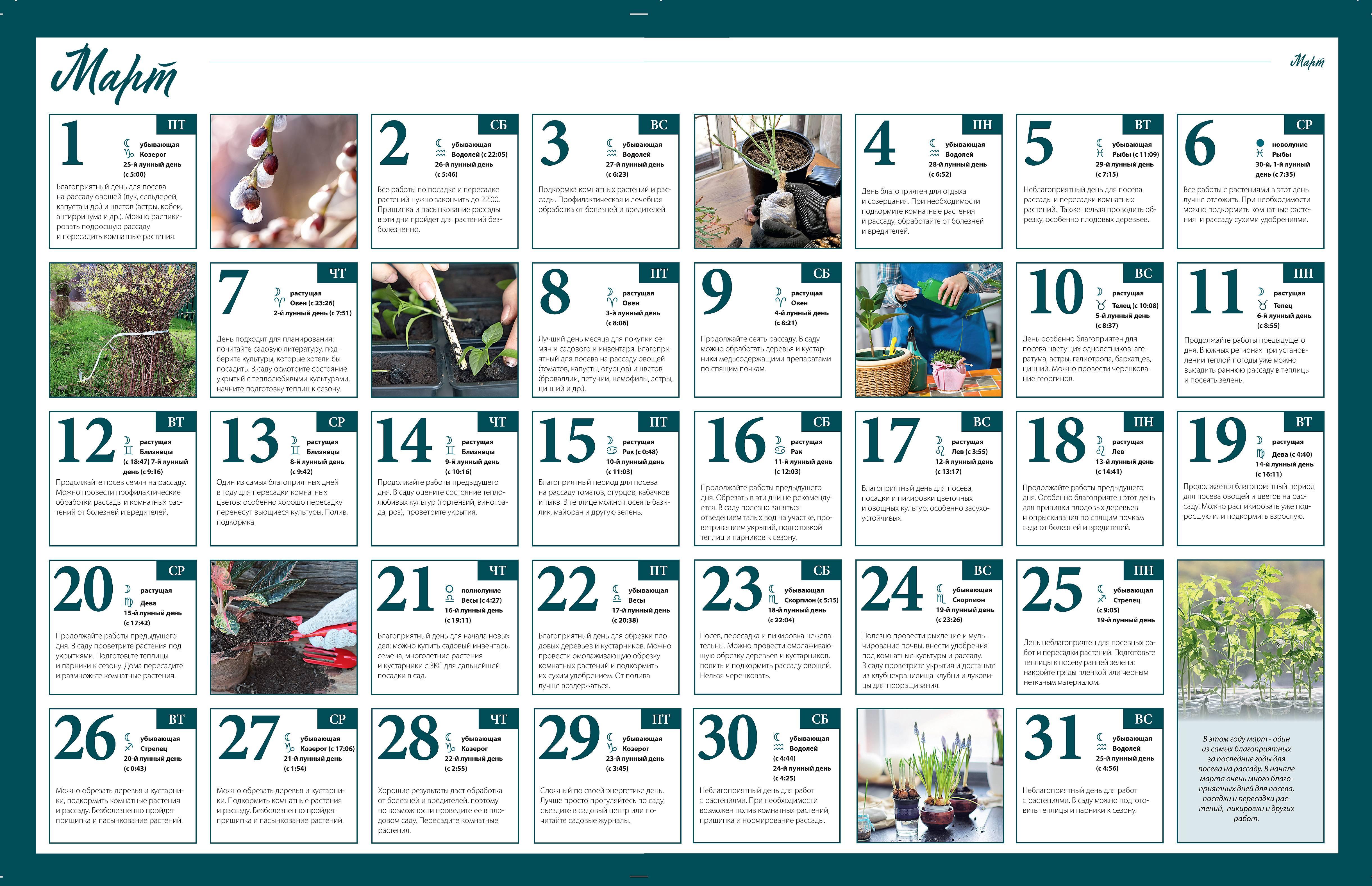 Лунный календарь для растений по дням на март 2020 :: инфониак