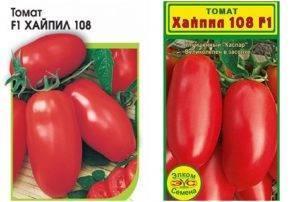 Неприхотливая новинка из японии — томат диаболик f1: описание сорта и особенности его выращивания