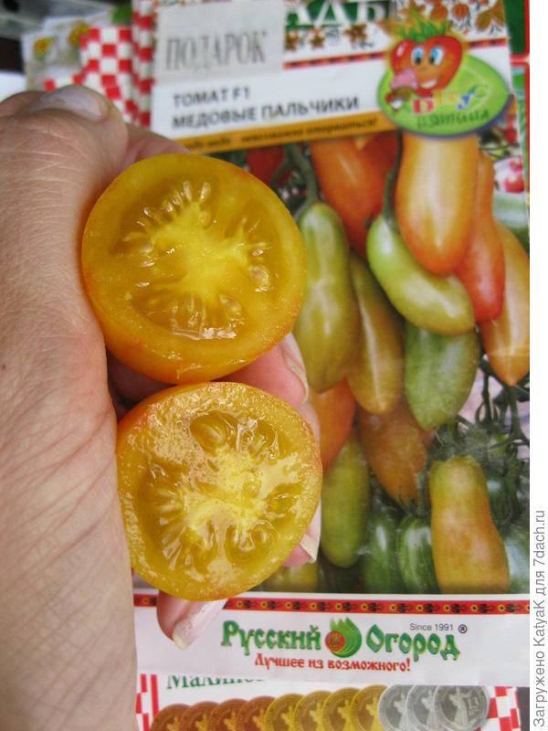 Томат чудо-пальчики от сибирского сада. для любителей вяленных томатов - сад, огород - страна мам