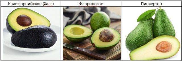 Как правильно выбирать авокадо  - все признаки спелого плода