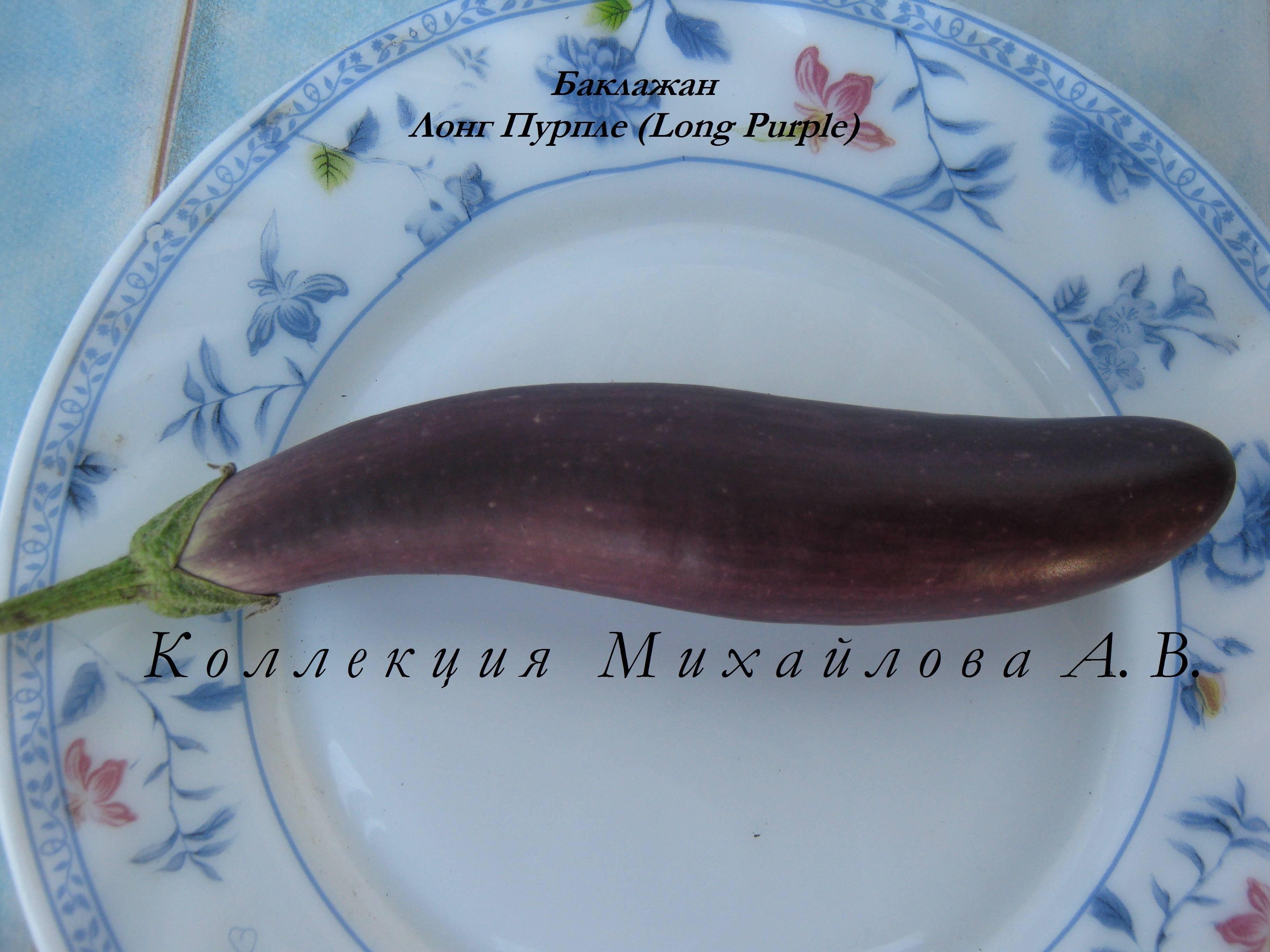 Описание баклажана «длинный фиолетовый», его характеристики, плюсы и минусы