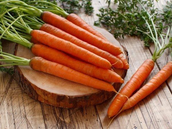 Морковь несравненная — описание сорта, фото, отзывы, посадка и уход