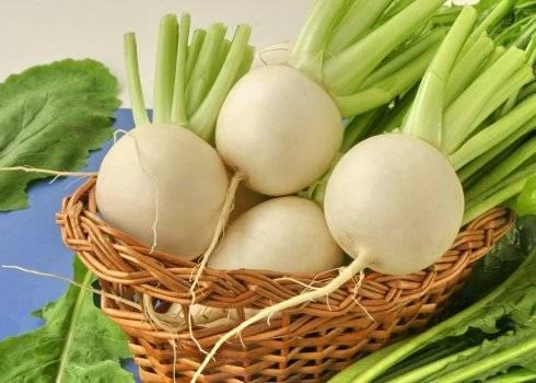 Полезные корнеплоды: редька, репа, брюква