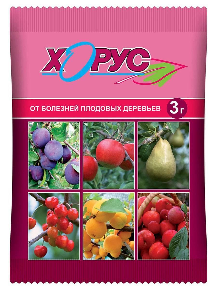 Препараты для обработки винограда от болезней и вредителей
