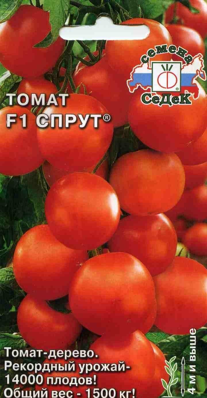 Сорт томата спрут