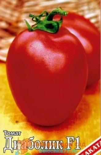 Какие томаты сажать в теплице из поликарбоната: лучшие сорта и рекомендации по выращиванию