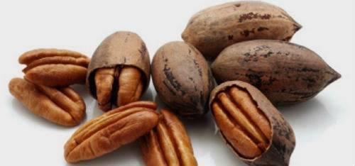 Орех пекан: польза и вред