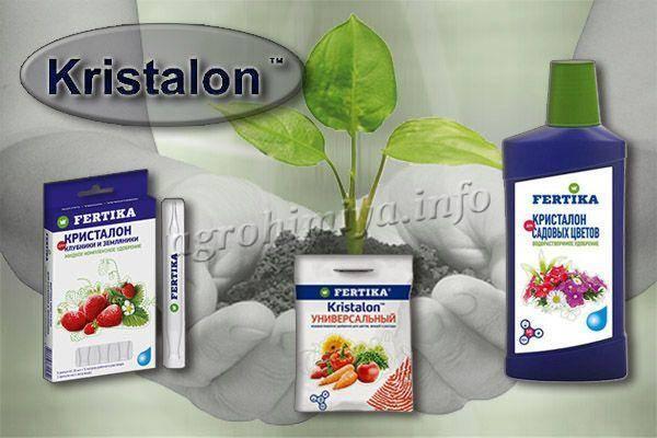 Способ применения удобрения кристалон для разных растений