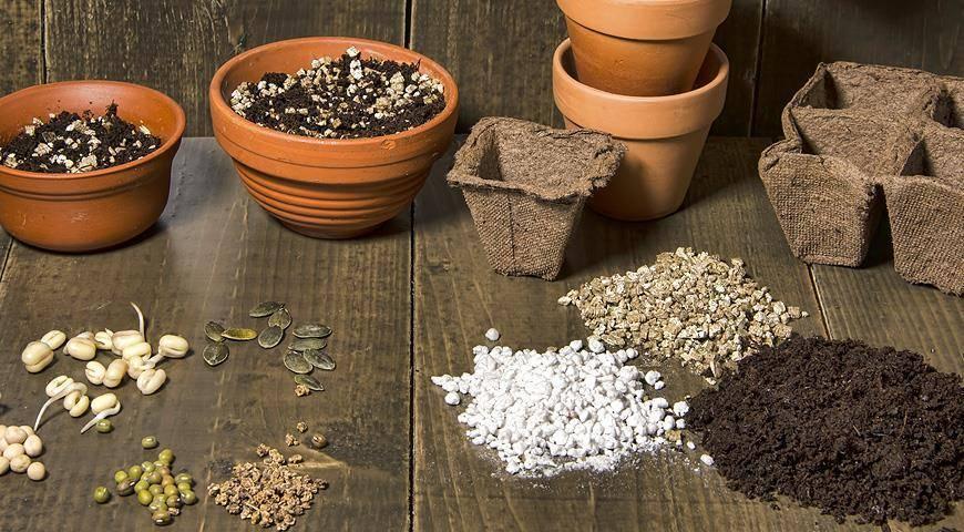 Улучшители почвы и их применение