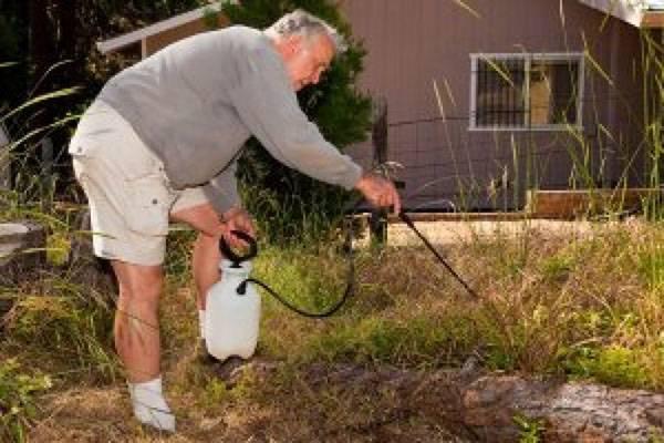 Гербицид граунд вр инструкция по применению. гербицид граунд – защита от сорняков: отзывы