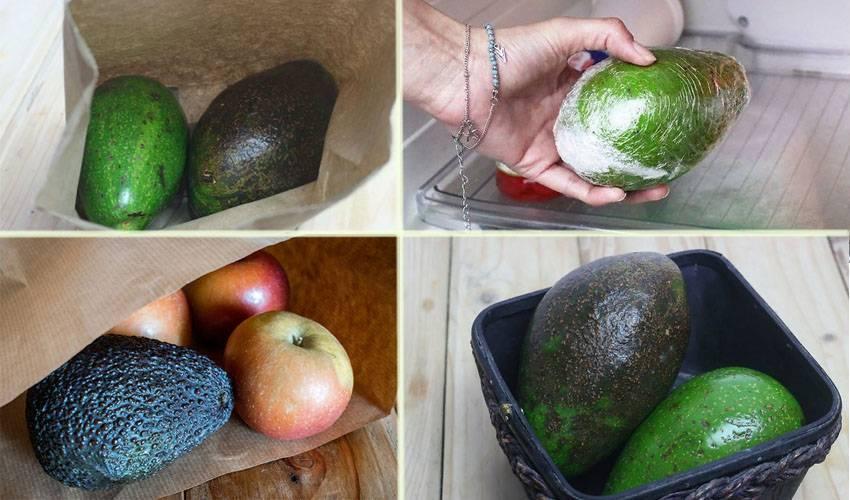Сколько и как хранить авокадо в домашних условиях?