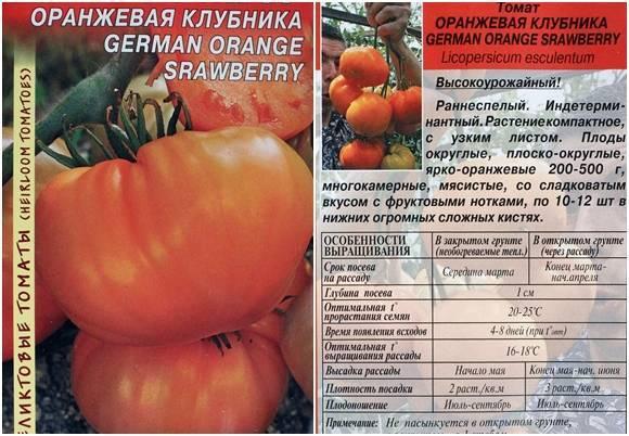 Томат Оранжевая клубника: описание сорта, фото, отзывы
