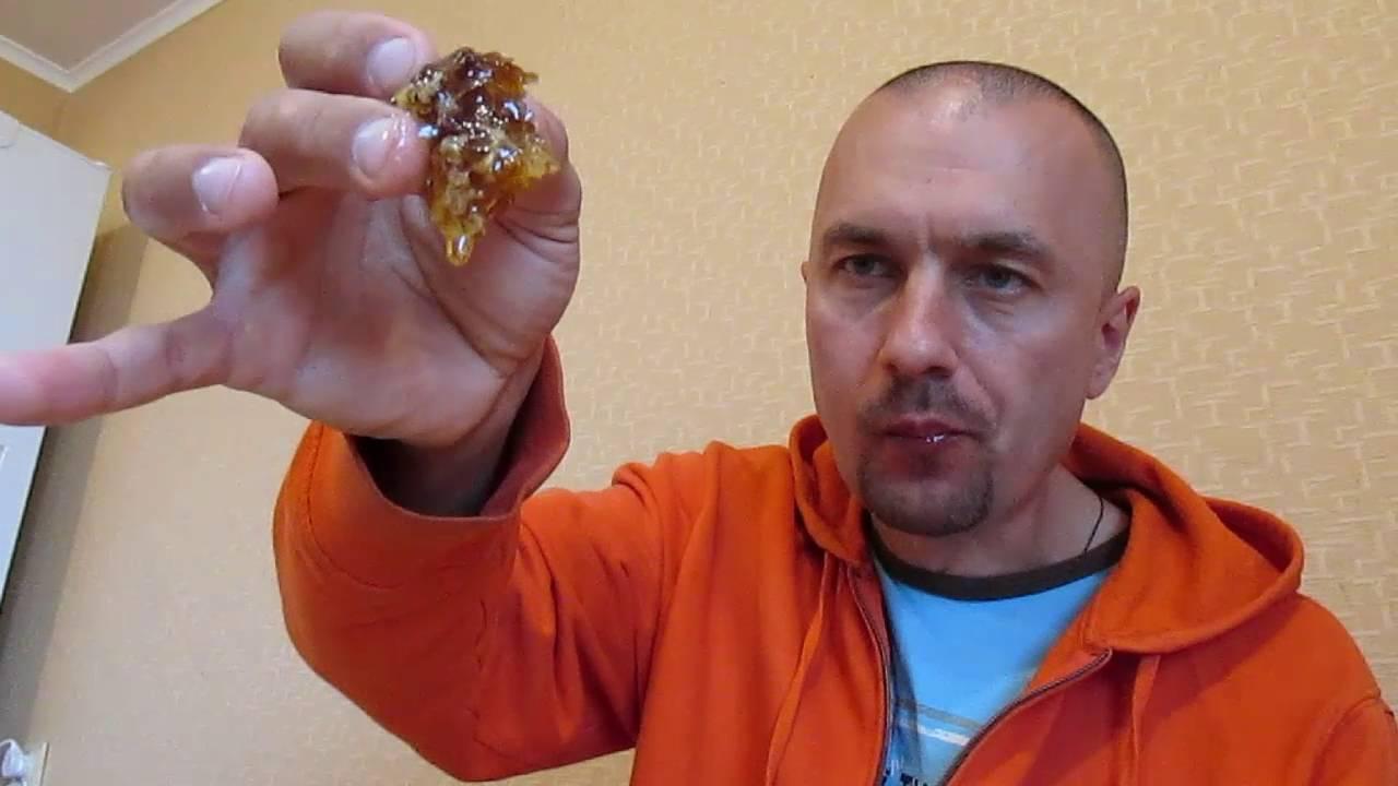 Мед в сотах: можно ли его употреблять в чистом виде и как это сделать?