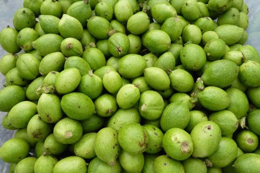 Зеленые орехи: какие болезни лечат, рецепты